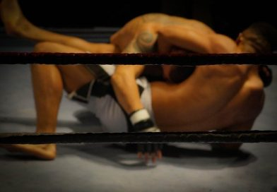 mma mixed martial art